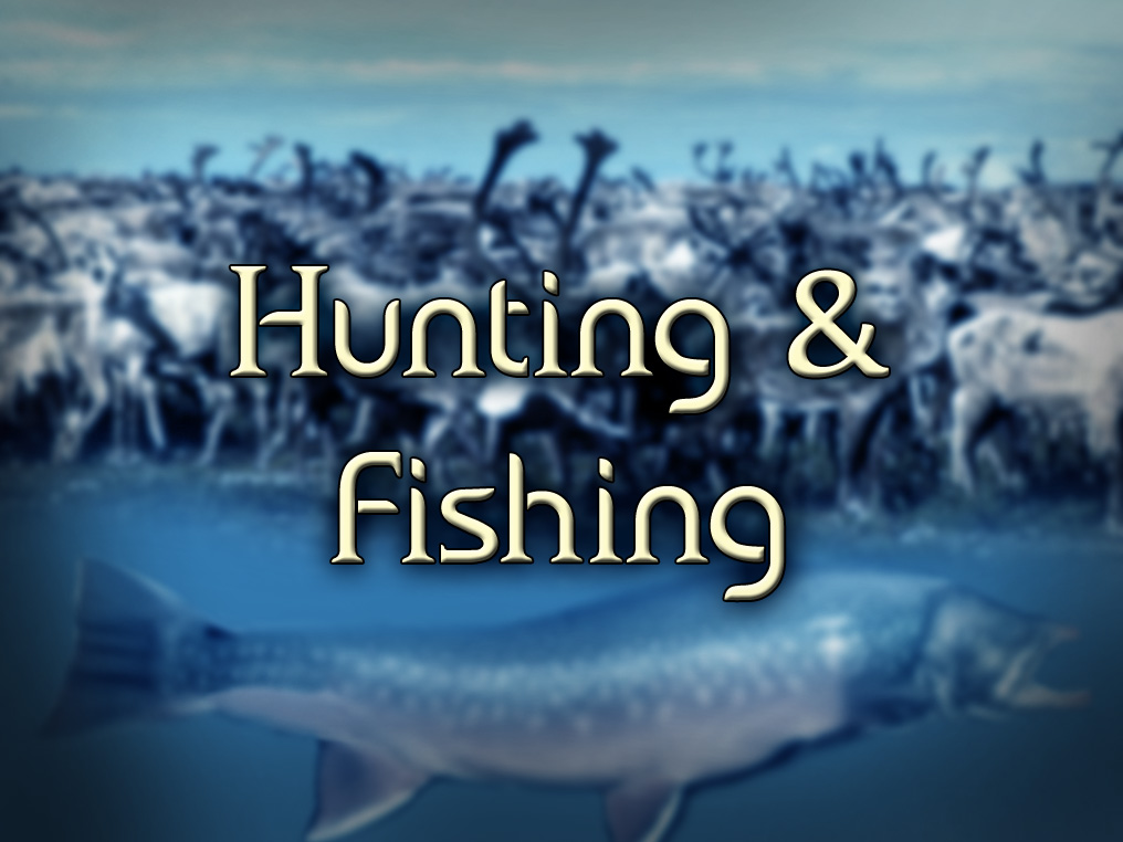 Hunting & fishing: Aircraft Charters