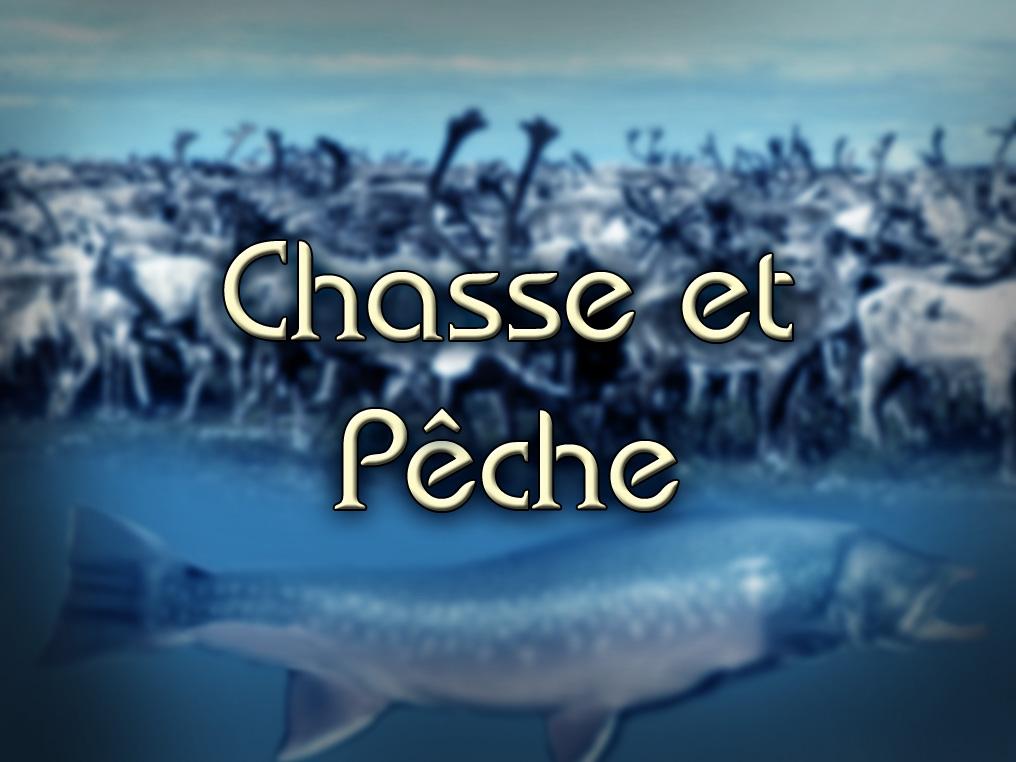 Chasse et Pêche: Avions Nolisé